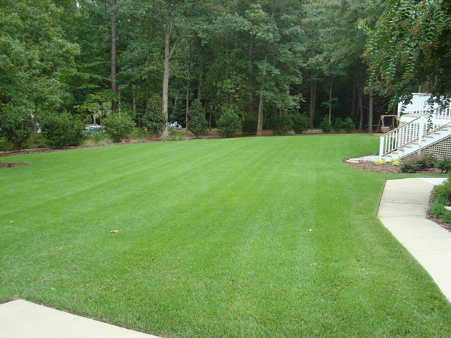 Design - Build Lexington, SC - Green Earth Services, Inc. Landscape Services